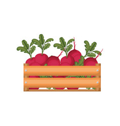 Colorful silhouette of wooden box with beets vector