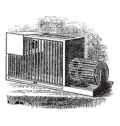 Rat cage vintage engraving vector
