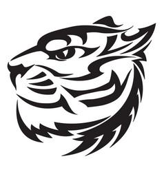 Tiger head design vintage engraving vector