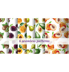 Collection set of 6 bright fruit patterns vector