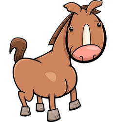 Little horse or foal cartoon vector