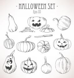Set of pumpkins vector image