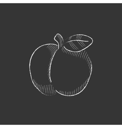 Apple Drawn in chalk icon vector image vector image