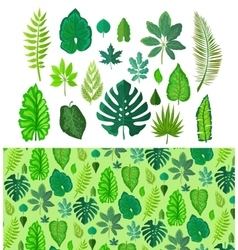Set of tropical leaves collection green leafs vector