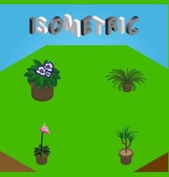 Isometric flower set of grower flowerpot vector