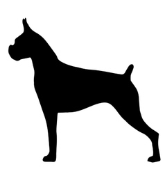 High quality silhouette of the bulldog isolated on vector