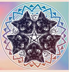 black cat head portrait madnala moon pentagram vector image