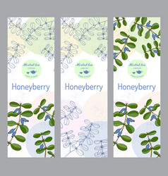 herbal tea collection honeyberry banner set vector image vector image