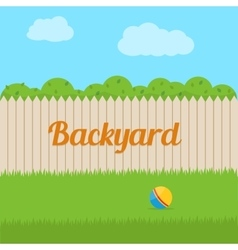 House backyard vector image
