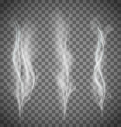 Set of transparent white smoke vector image vector image