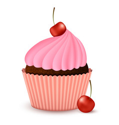 Chocolate cupcake with cherry vector