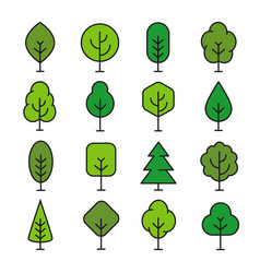 green tree outline vector image vector image