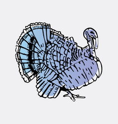 Hand-drawn turkey engraving stencil style vector
