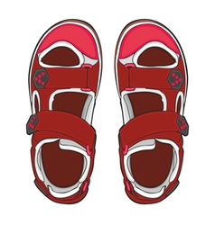 Summer shoes vector
