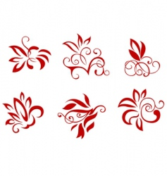 Floral and flower decorations vector