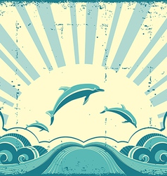 Grunge nature poster with dolphins in ocean vector image vector image