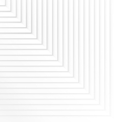 white vector image vector image