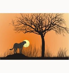 Cheetah and sunset vector