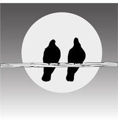 birds on the wire vector image