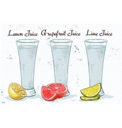 Glasses of juices on a notebook page vector