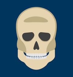 Human skeleton skull front side silhouette vector