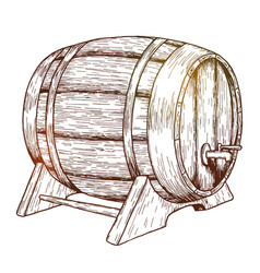 sketch of beer barrel vector image