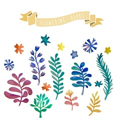 Watercolor flowers collection awesome flowers made vector