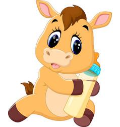 cute baby horse cartoon vector image