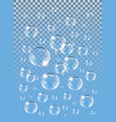 realistic isolated soap bubbles on the blue vector image vector image