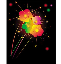 fireworks night vector image vector image
