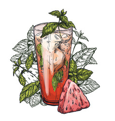 Mojito cocktail watermelon and mint leaves vector
