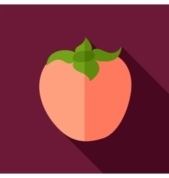 Persimmon flat icon tropical fruit vector