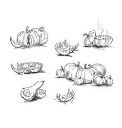 Pumpkins dishes with pumpkin vector