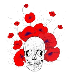 skull and poppies vector image vector image