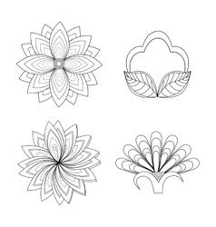 Floral design Doodle white vector image vector image