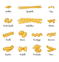 macaroni spaghetti and others type of italian vector image