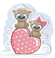Two Bears is sitting on a heart vector image vector image