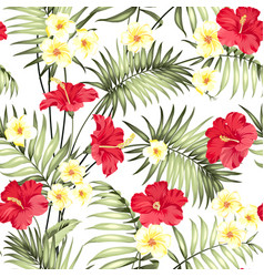 plumeria flowers and jungle palms vector image