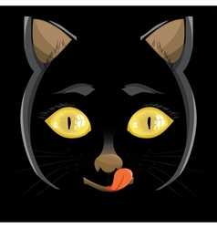 Head of a black cat with yellow eyes on a black b vector