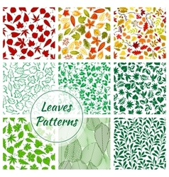 Color leaves seamless patterns set vector image