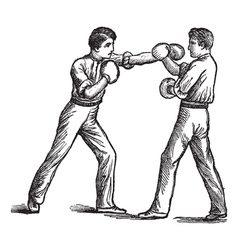 Two boxers boxing vintage engraving vector