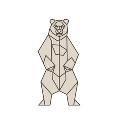 Bear of the contour lines polygons low poly vector image vector image