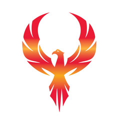 Stylized graphic phoenix bird flying with expanded vector