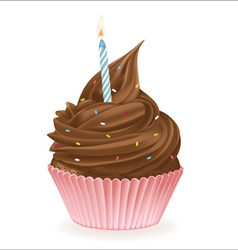 Chocolate birthday cupcake vector