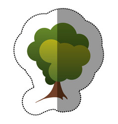 color stamp stylized tree icon vector image vector image