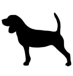 High quality silhouette of beagle vector