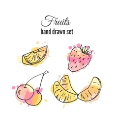 Fruit  set of hand drawn fresh vector