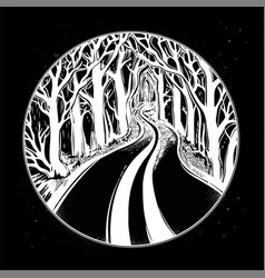 empty road in the night through dark forest vector image vector image