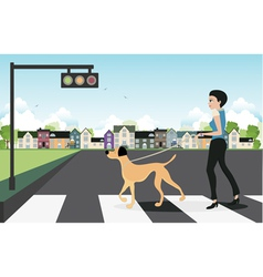 Leash dog across the street vector