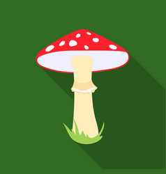 amanita icon in flat style for web vector image